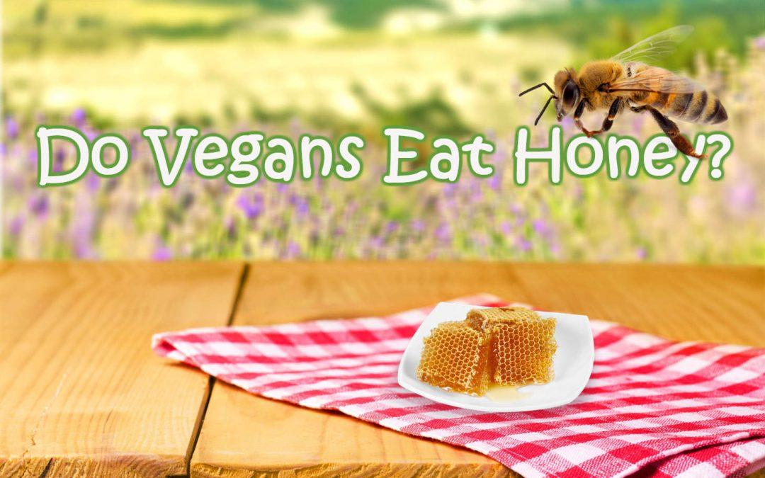 #1 Reason Why Vegans Do Not Eat Honey