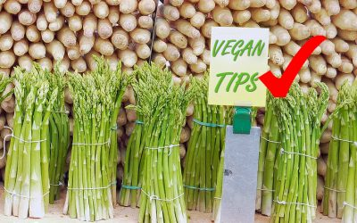 Easy Tips for Going Vegan