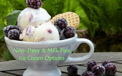 Non Dairy & Milk Free Ice Cream Brand List