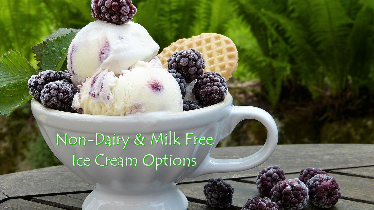 non dairy and vegan ice cream brand options list